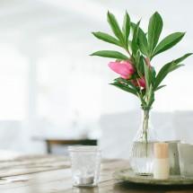 miljobild-blomma